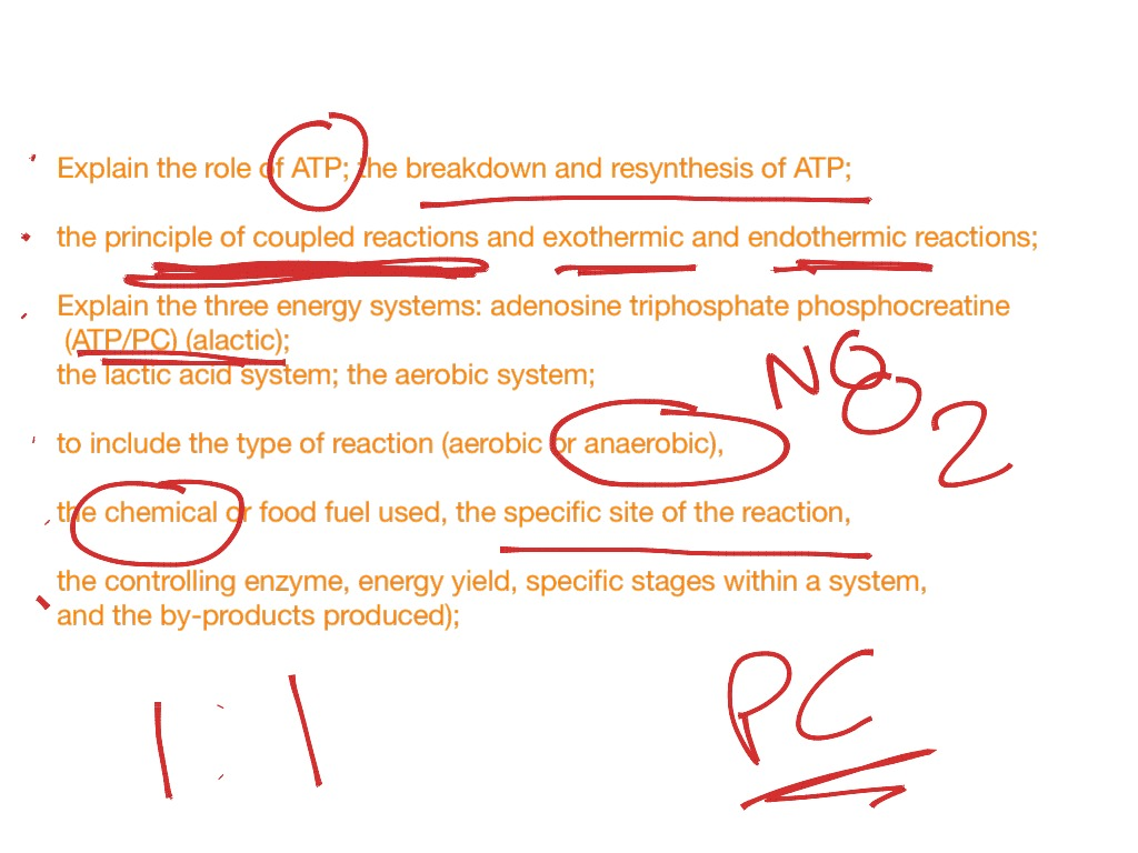 atp-pc energy system resynthesis Atp resynthesis the energy for all glycolysis is the predominant energy system used for all-out exercise lasting from 30 seconds to about 2 minutes and is the.