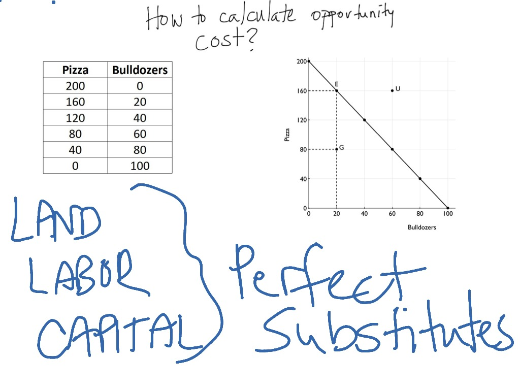 How To Calculate Opportunity Cost?