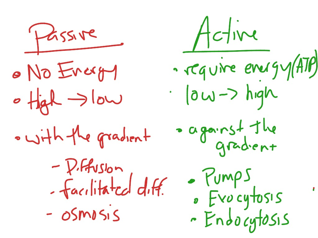 active and passive transport Active and passive transport is a biological process that supplies nutrients, water, oxygen to cells and removes waste products.