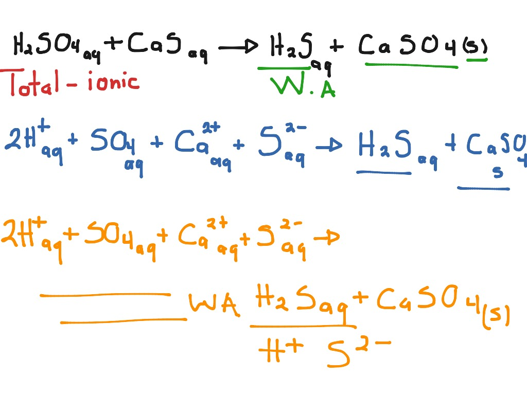 ShowMe - net ionic equation