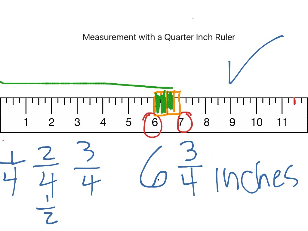 worksheet Inch Measurement measurement on a quarter inch ruler lesson 1 math elementary 3rd grade showme