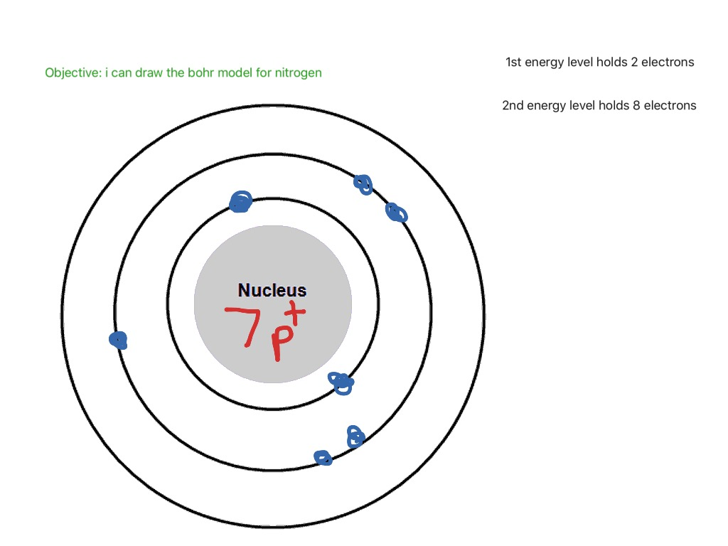 Diagram of a model nitrogen wiring library bohr model for nitrogen science chemistry elements showme rh showme com nitrogen cycle diagram nitrogen cycle diagram to label ccuart Choice Image