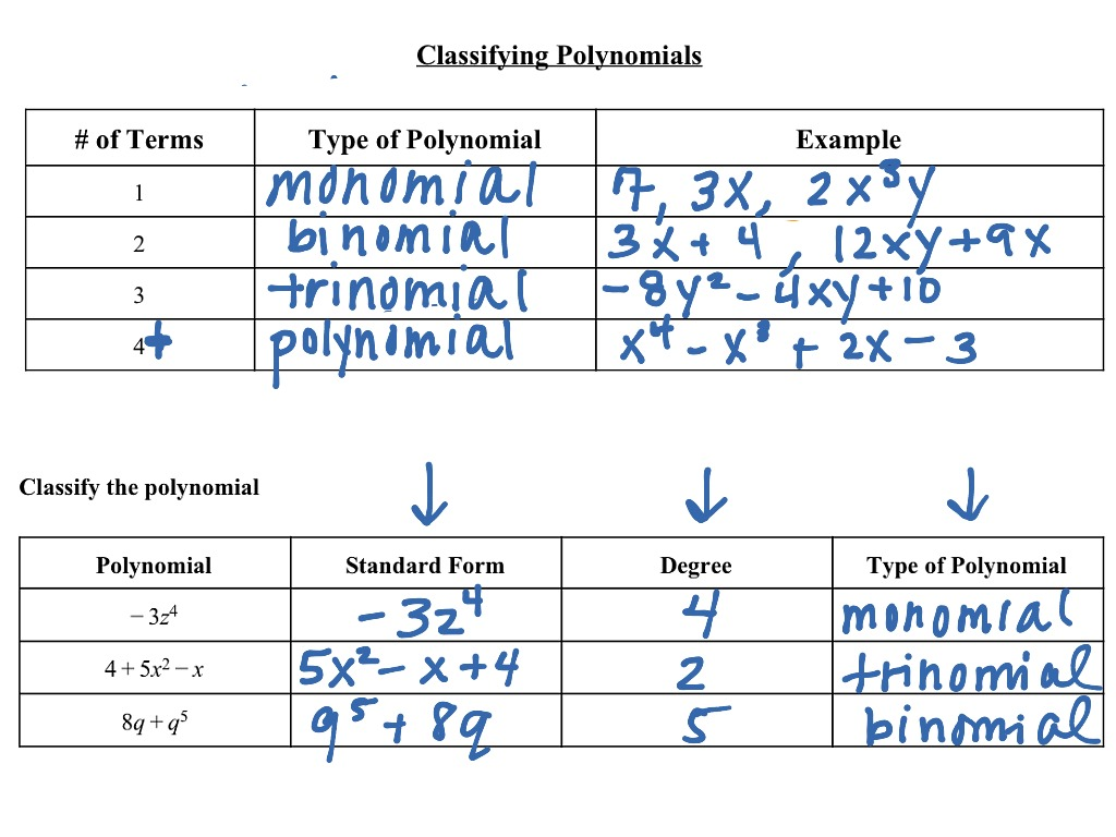 Showme classifying polynomial a most viewed thumbnail 71 classifying polynomials falaconquin