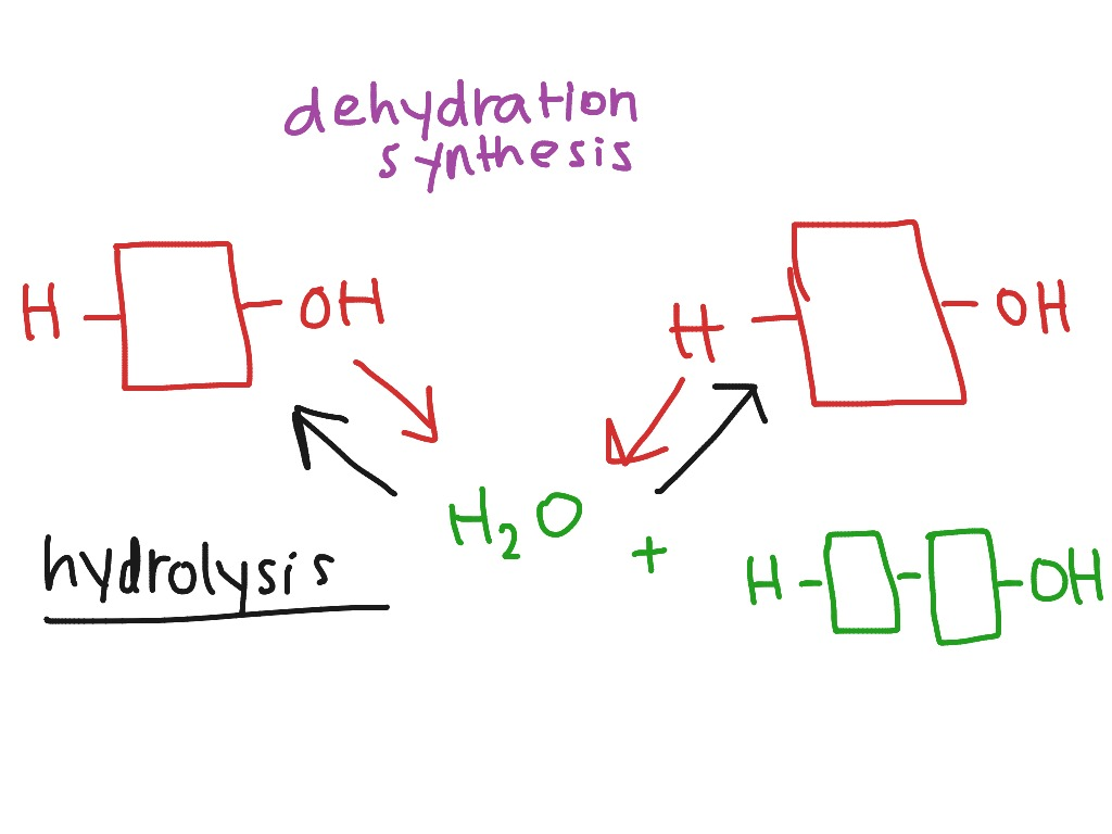 what is dehydration synthesis In chemistry, dehydration synthesis is defined as a type of chemical reaction, which produces water molecules after combining the reactants for such a process to take place, there are two primary requirements.