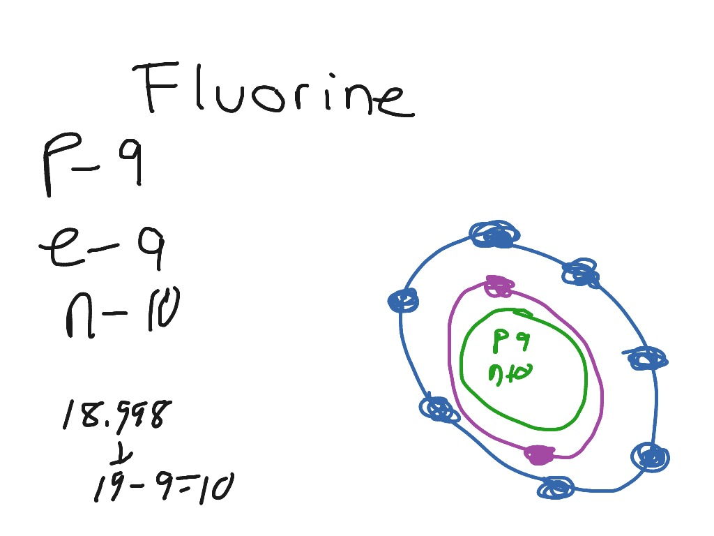 29 Bohr Diagram Of Fluorine