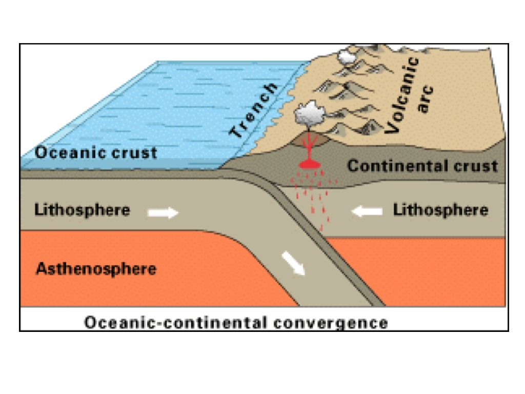 an analysis of the convergent plate boundary Activity: discover and investigate tectonic plate boundaries by analyzing maps   these volcanoes show the location where tectonic plates meet at convergent.