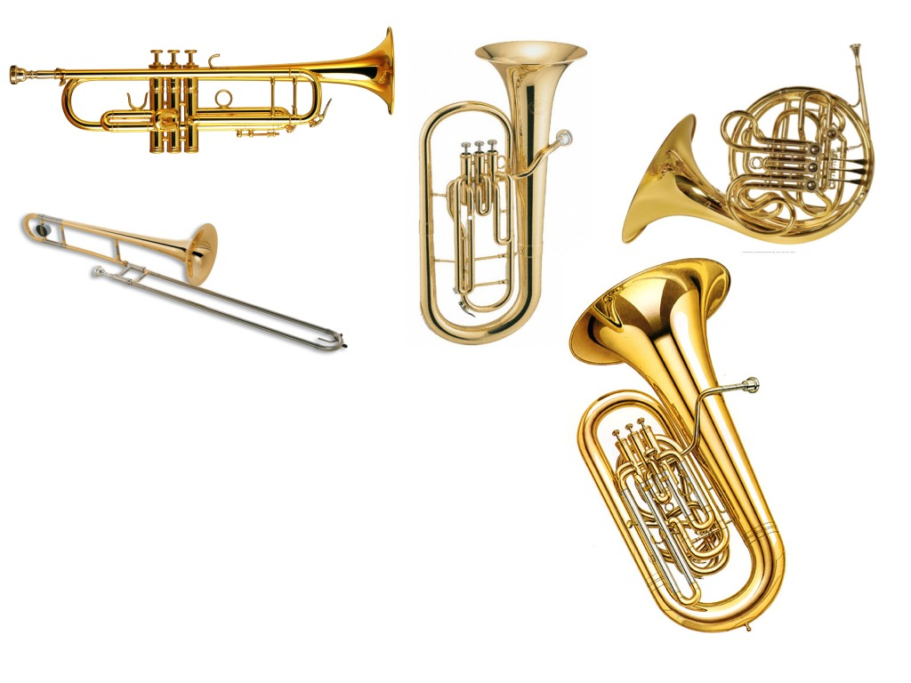 brass instruments music showme