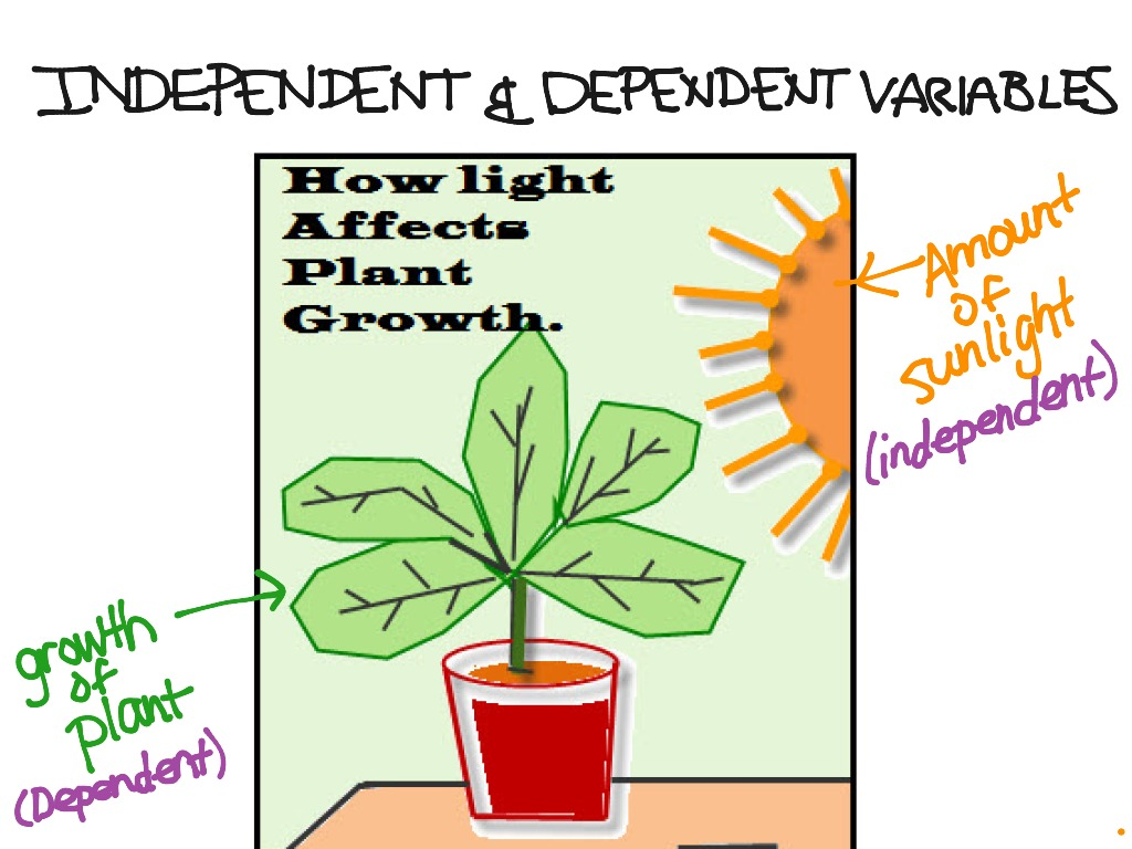 Independent Dependent Variables Math Showme