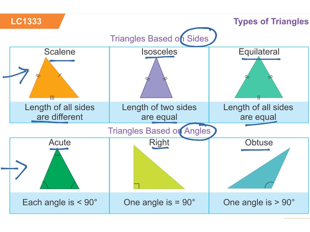 types of triangles - 755×523
