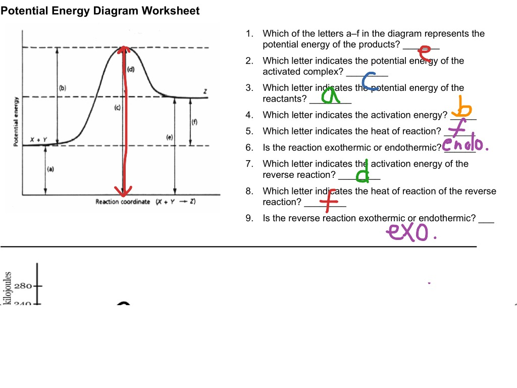 Worksheets Potential Energy Diagram Worksheet 12 1 reading a potential energy graph science chemistry equilibrium showme