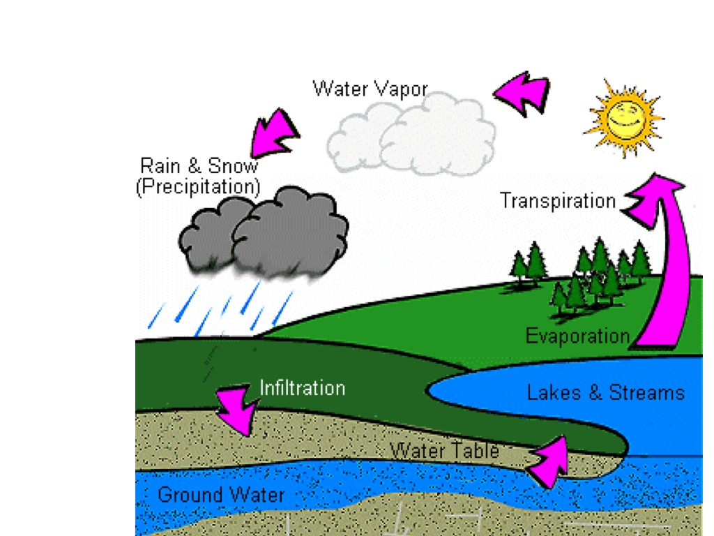 Water cycle science weather water cycle showme ccuart Choice Image