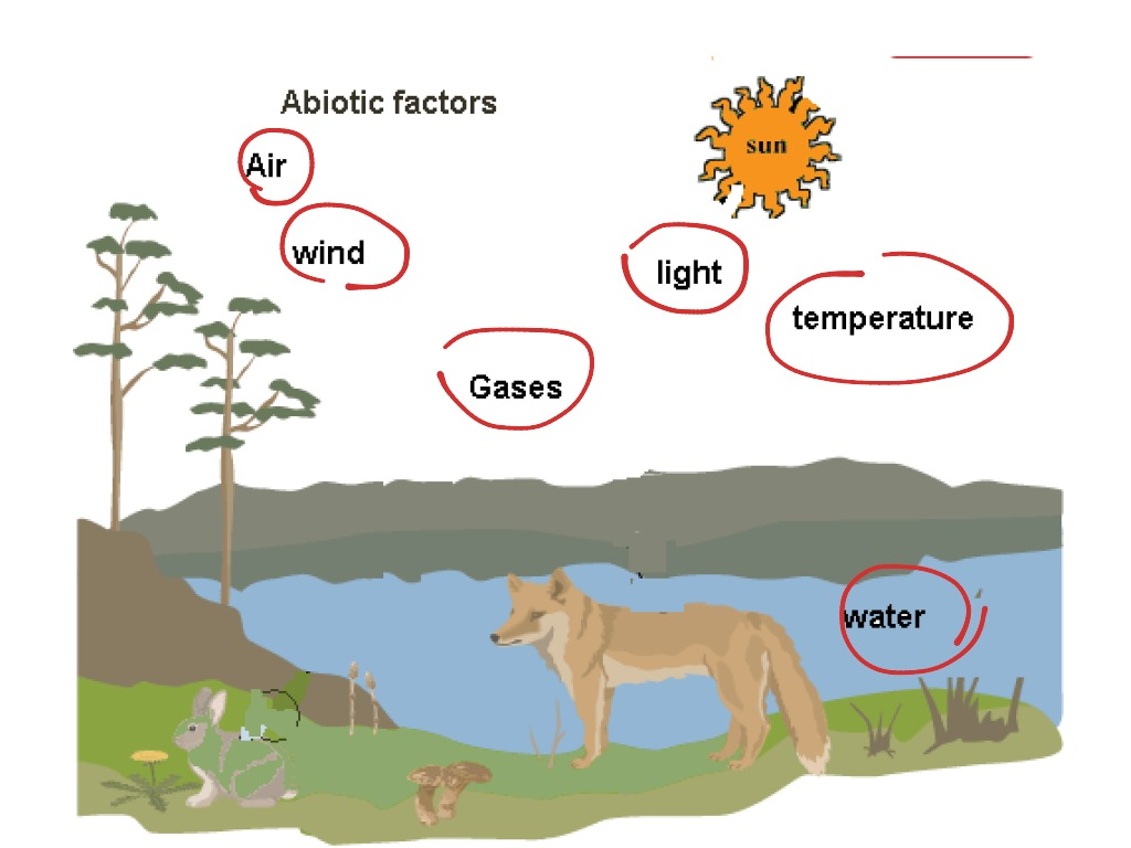 biotic and abiotic components in the Abiotic and biotic factors are the nonliving and living parts of an ecosystem,  respectively for example, abiotic factors can be the temperature,.