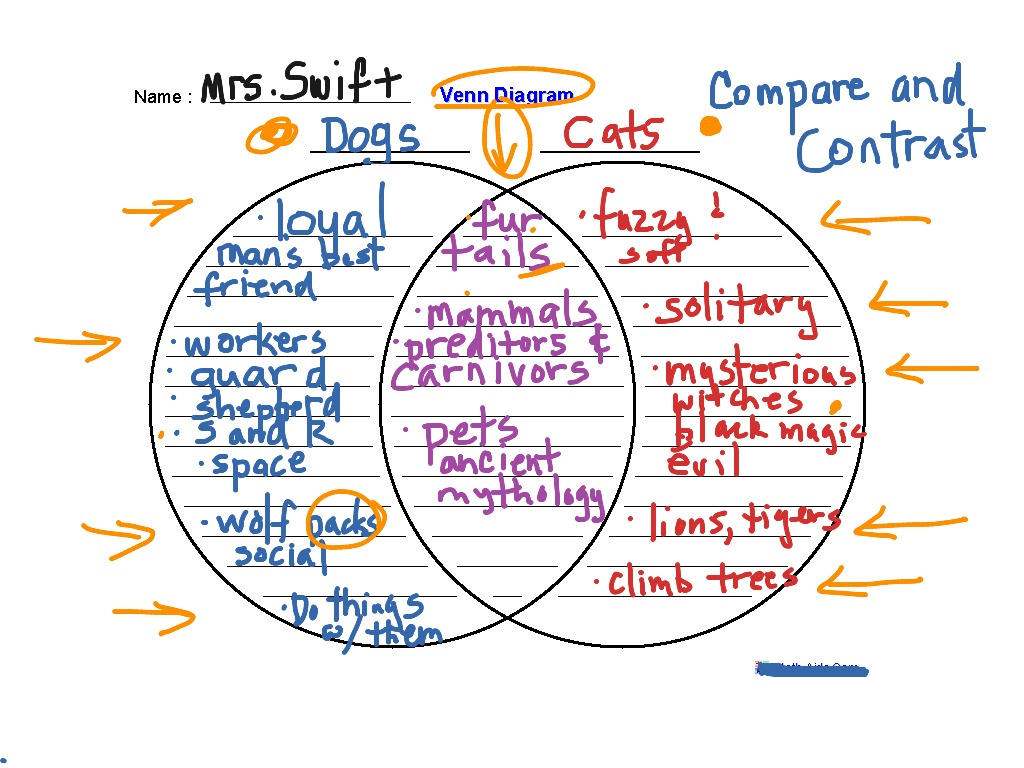 compare and contrast w venn diagram english writing showme