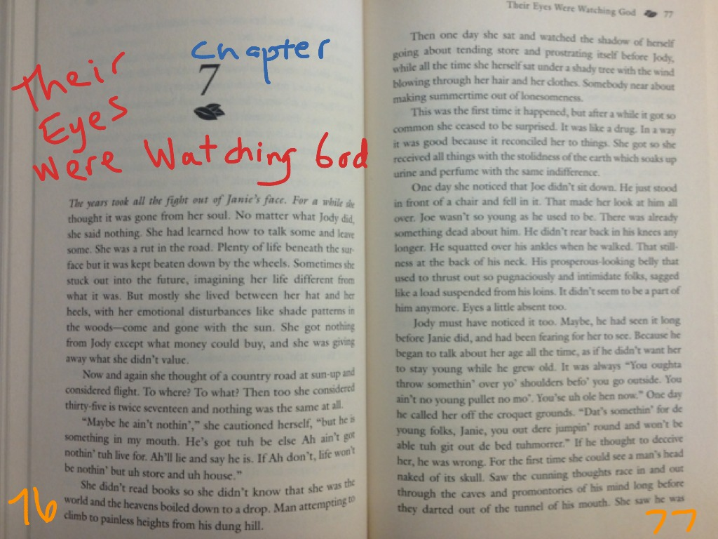 examples of figurative language in their eyes were watching god
