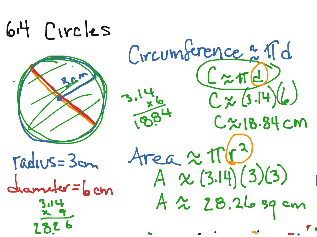 worksheet Circumference Of Circle showme circumference and area of circles most viewed thumbnail